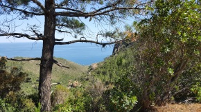 View of the med from the Massif Esterel