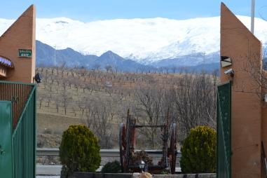 View from Suspiro del Moro