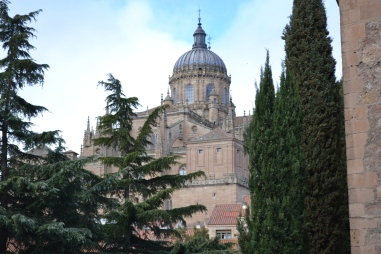 New Cathedral of Salamanca