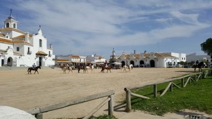 Horses in El Rocio