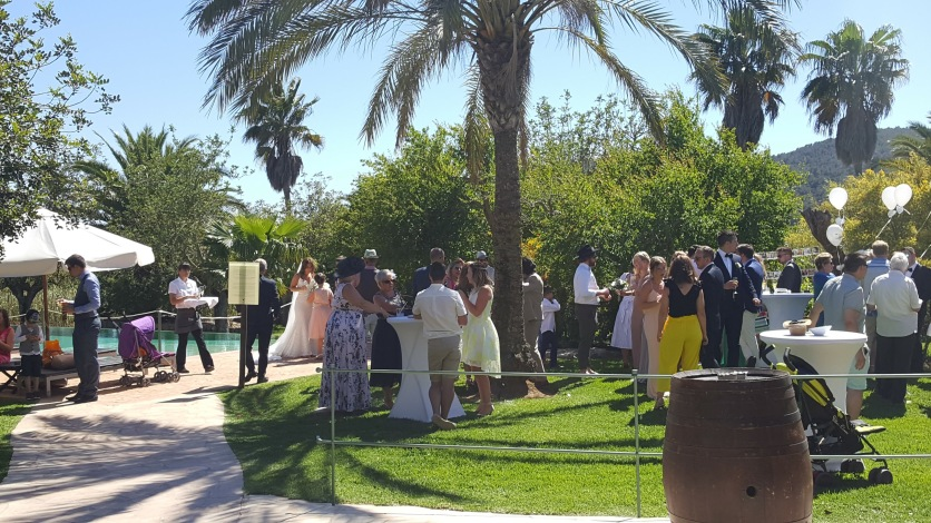 Some of the wedding party