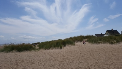 The dunes at Anderby Creek