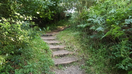 Boggle Hole steps