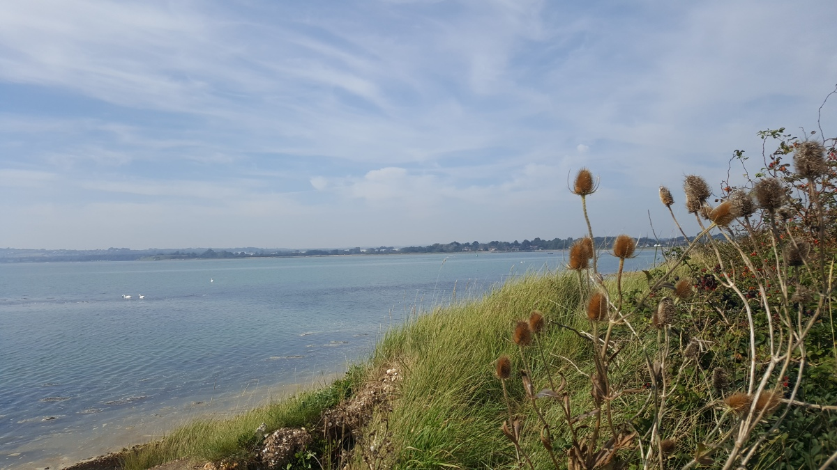 Finding a little gem right on our doorstep – Warblington & cycling the Hayling Billy