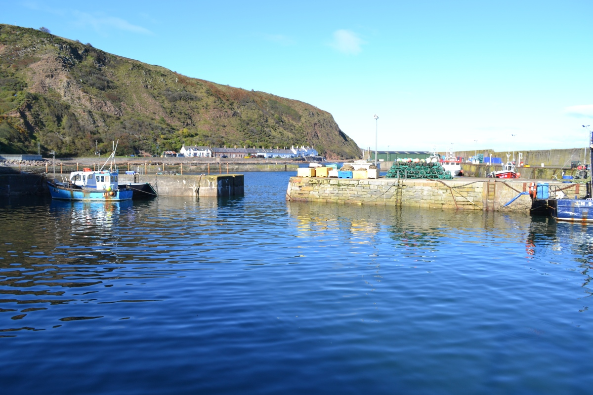 A daytrip across the border – to St Abbs via Eyemouth