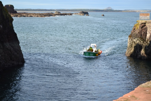 Watching the fishing boats returning to harbour in Dunbar