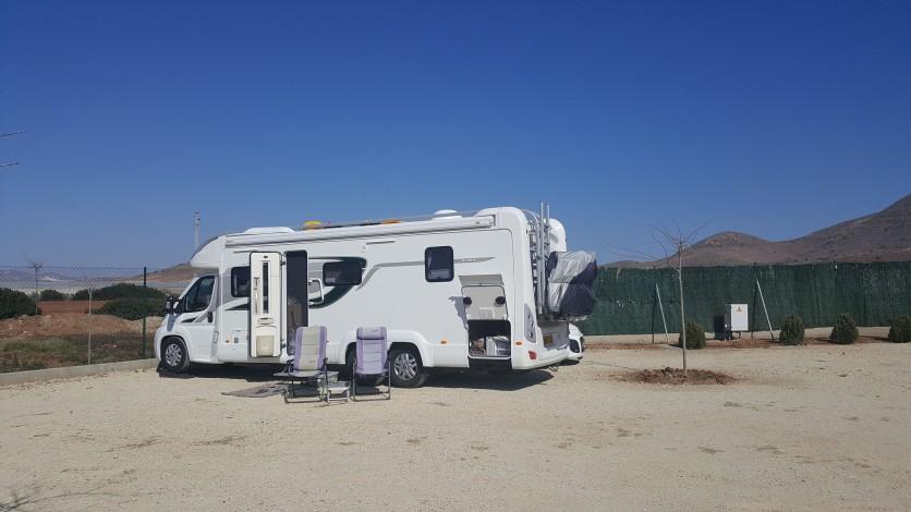 Camper Park Olivares, Albaricoques