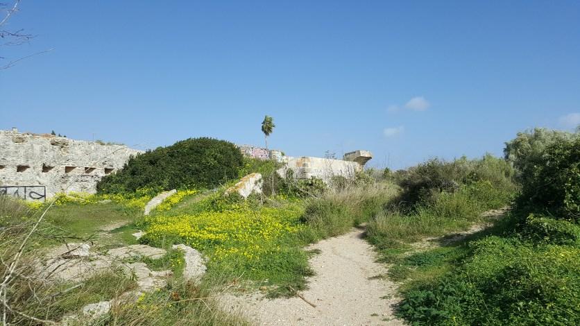 Castle ruins nr Puerto Sherry